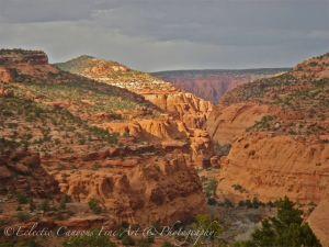 Upper Alone Creek Canyon (the gulch)